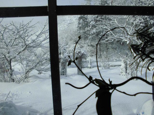 ★。★久しぶりの雪です・・・美蔵
