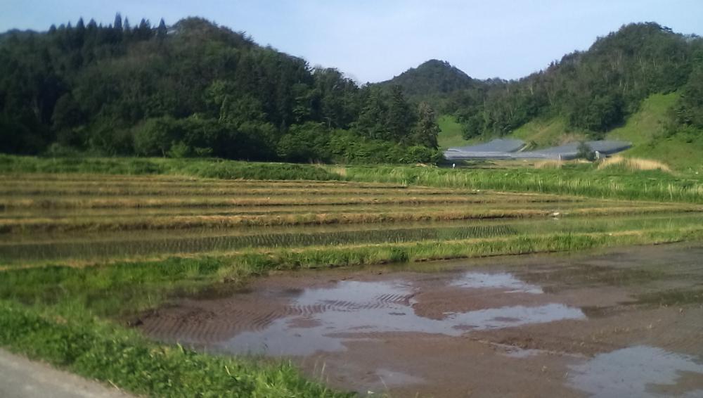★。★今年も、美味しいお米ができますように…美蔵