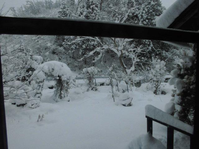 ★。★間違いなく雪が降っております・・・美蔵