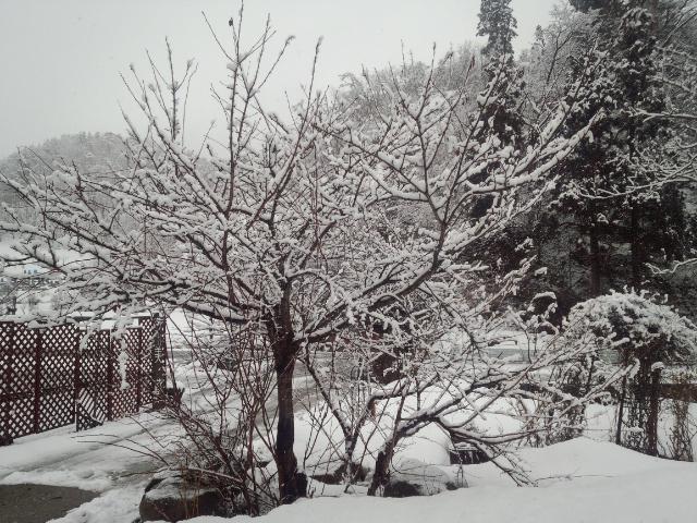 ★。★今日は、やはり大荒れの天気です・・・美蔵