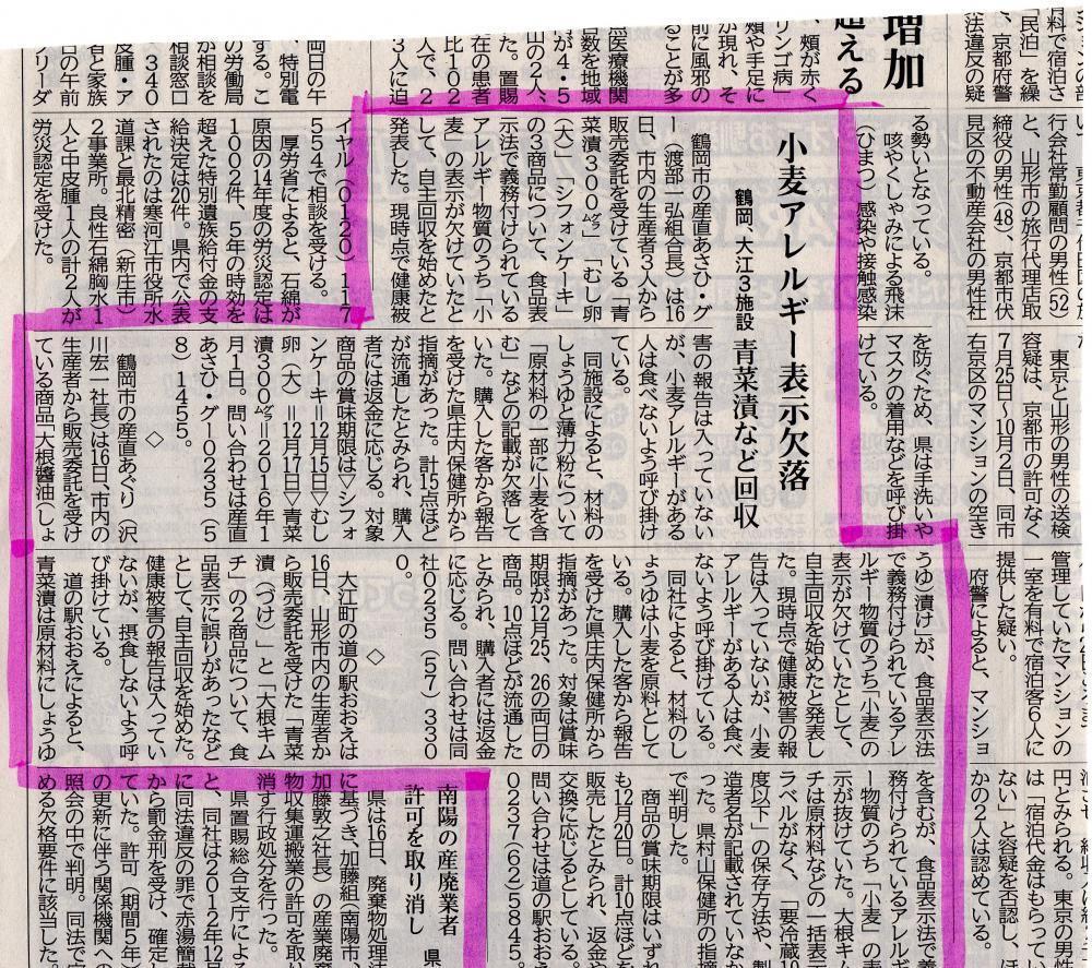 山新12月17日の記事について:画像