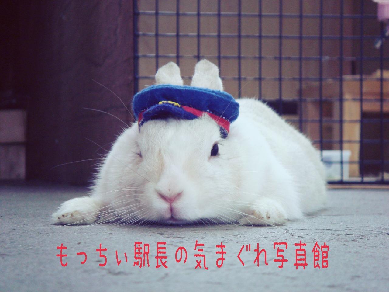 山形鉄道宮内駅:もっちぃ駅長のきまぐれ写真館