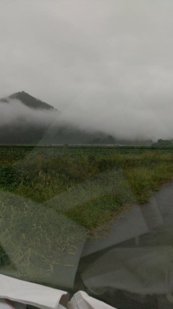 霧の中に………