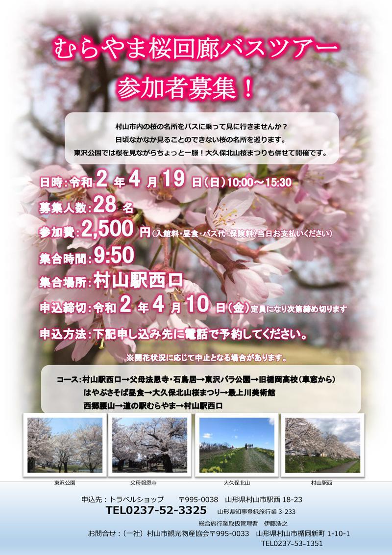 村山樱花回廊公共汽车旅游参加者招募:图片