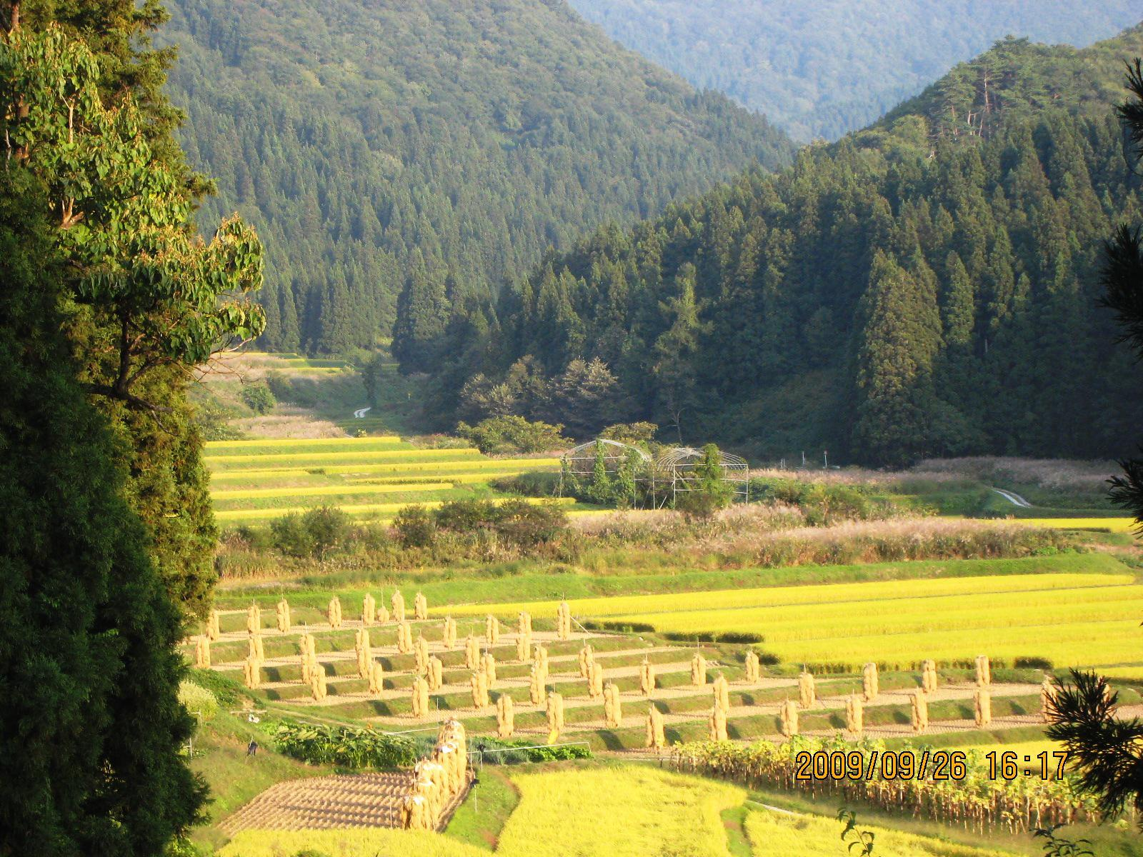 秋の味覚を楽しむ収穫ツアーinむらやま オンラインバスツアー参加者募集