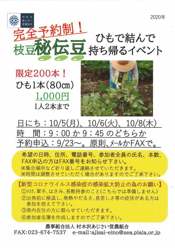 枝豆「秘伝豆」ひもで結わえて持ち帰るイベント!!