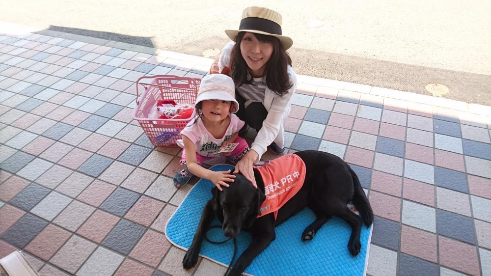「盲導犬ふれあい募金活動」に参加してきました!