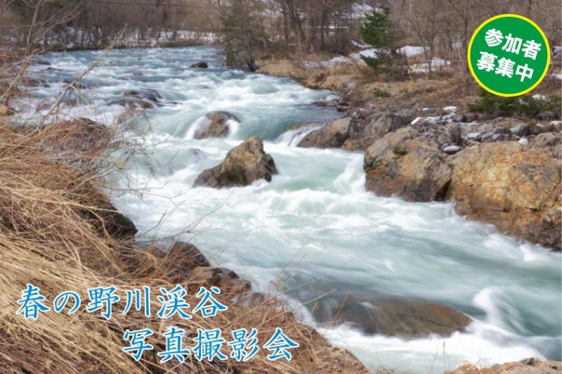 春の野川渓谷写真撮影会を開催しました:画像