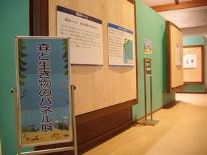 『森と生き物のパネル展』を開催しました:画像