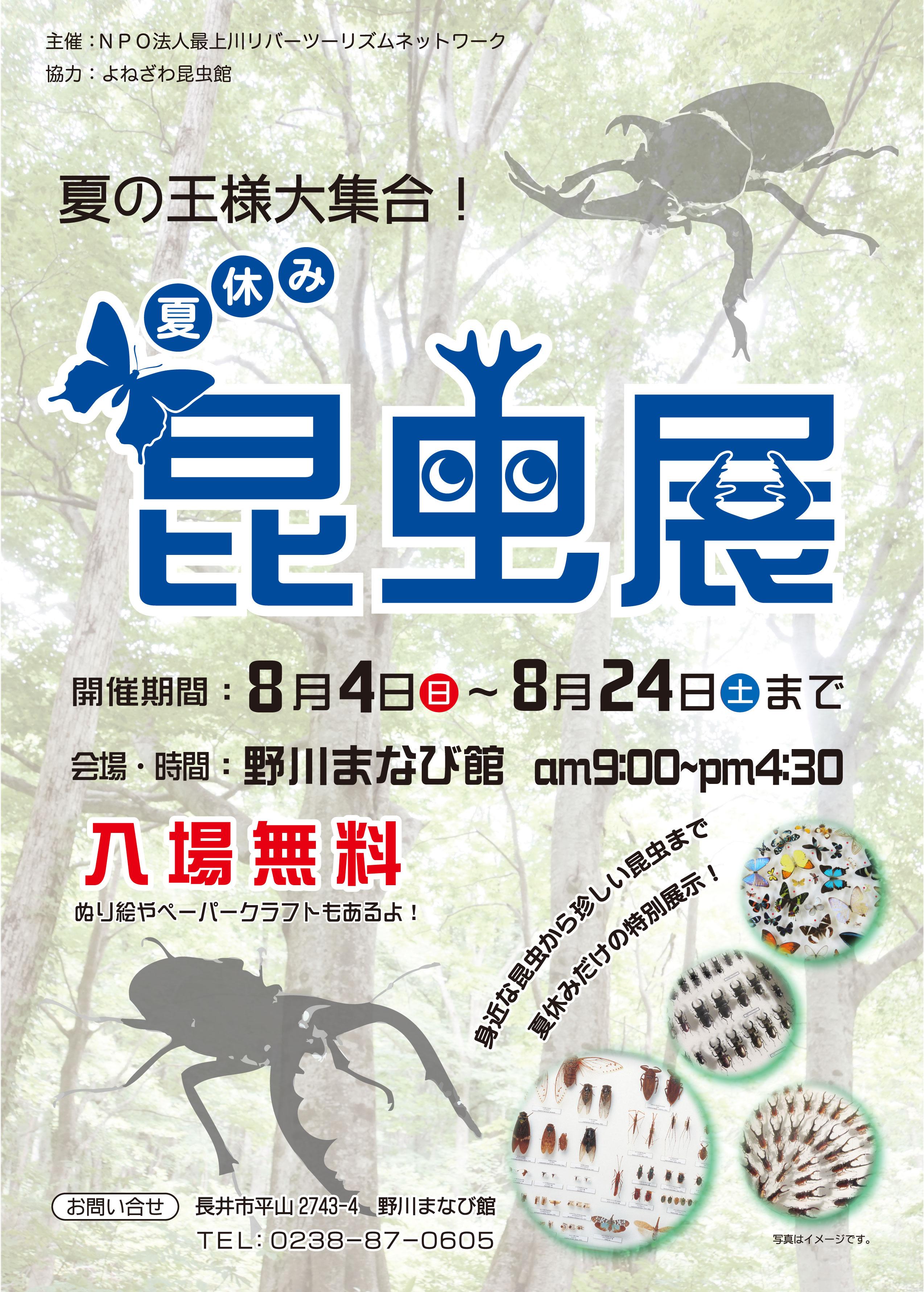 『夏の王様大集合!昆虫展』を開催しました:画像