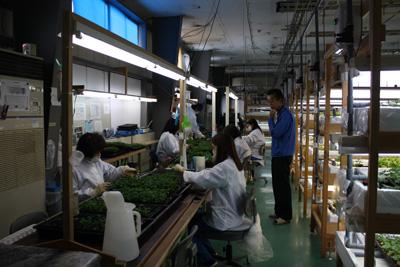 【農業×テクノロジー (株)環境彩エン】