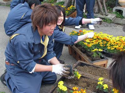 【高校生と商店街の花植え交流事業】