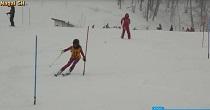 第61回長井市民スキー大会・第36回長井市小学校スキー大会(H29.2.11)