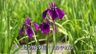 長井市民歌:画像