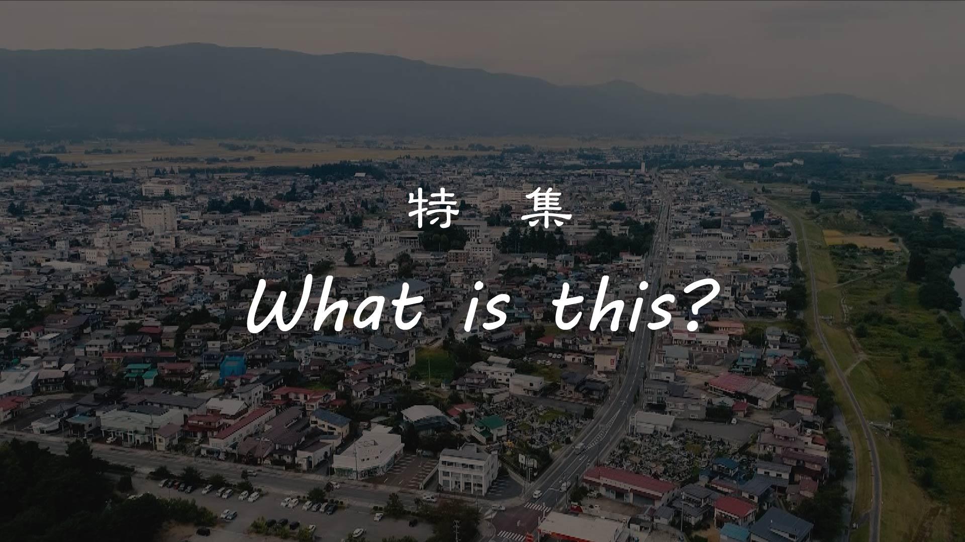 【長井市】 特集 『What is this?』 長井の四季総集 編