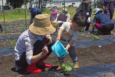 ☆共育セミナーなかよしくらぶ〜畑で元気に活動中!:画像