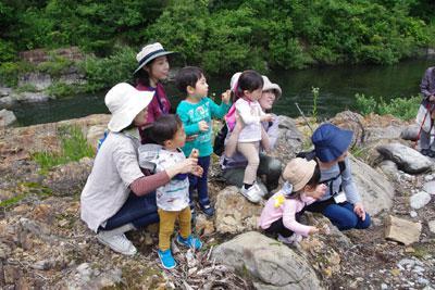 ☆共育セミナーなかよしくらぶ〜自然観察会と七夕:画像