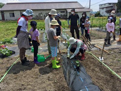 ☆食の安全安心事業 畑の楽耕(はたけのがっこう)〜令和3年度のスタートです:画像
