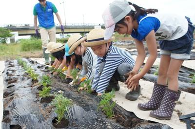 【お花がいっぱい~フラワーボランティア教室2012】