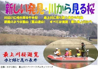 【最上川桜遊覧 ~川から見る桜~】