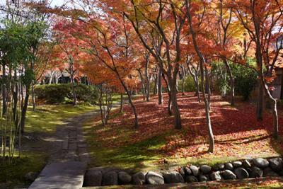 【晩秋の街なか風景】