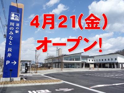 【「川のみなと長井」オープニングイベント予告 ~さくら通信~】