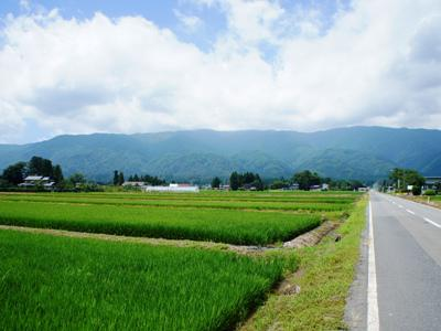 [scenery of crowd of Nagai] : Image