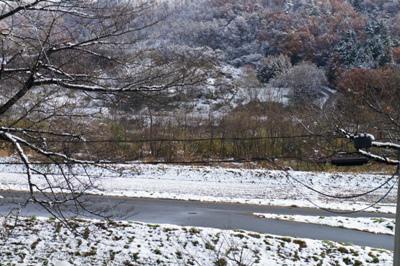 【初雪が降りました】