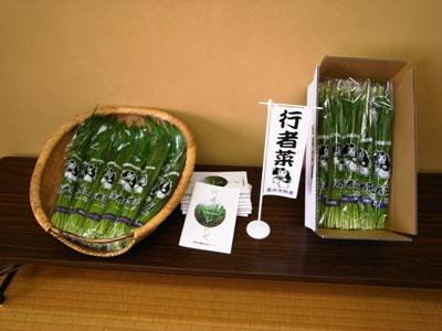 "[with ""Buddhist ascetic greens"" of Nagai by stamina supply] : Image"