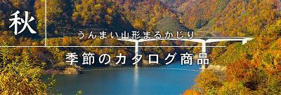 [ummai Yamagata Marukajiri 2018 autumn/winter] : Image