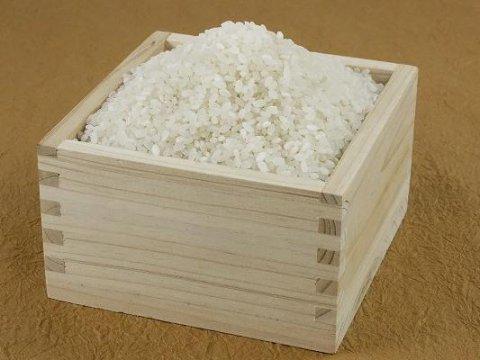 【美味しいお米の季節です♪】/
