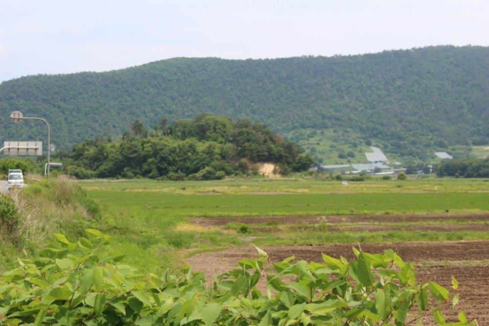 新田 野中森館跡(中ノ森館跡)
