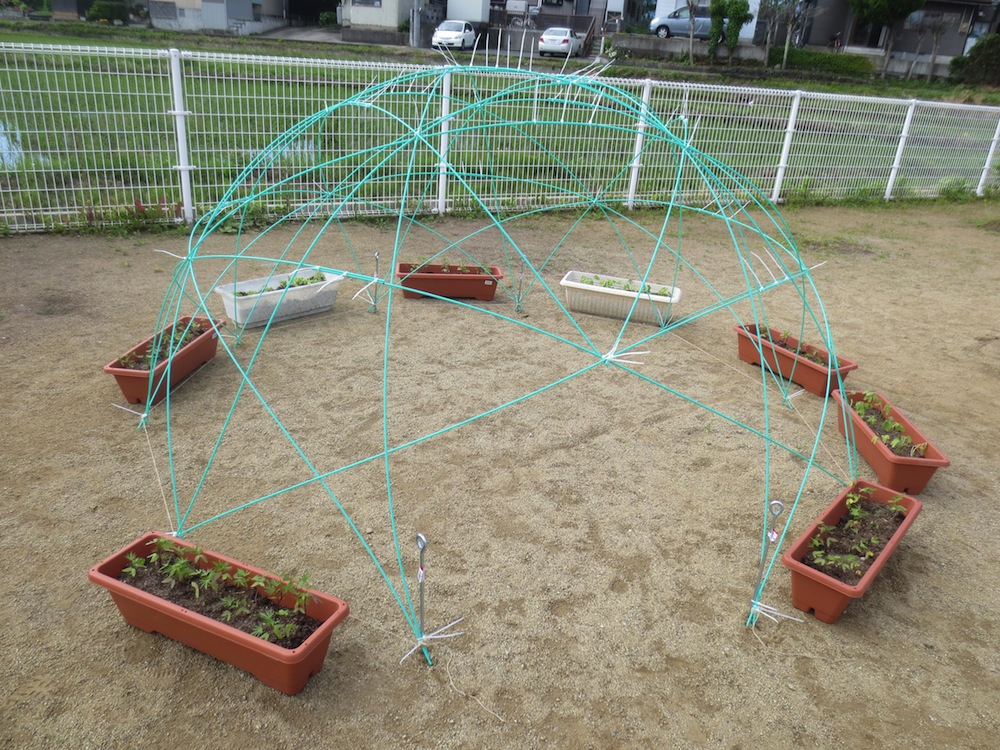 楽しくあそべる園庭づくり第一弾!