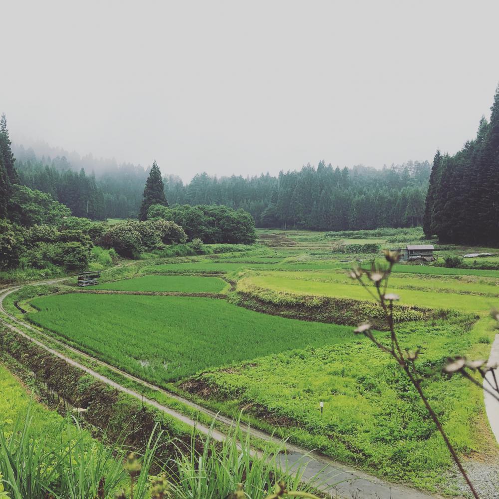 里山の風景:画像
