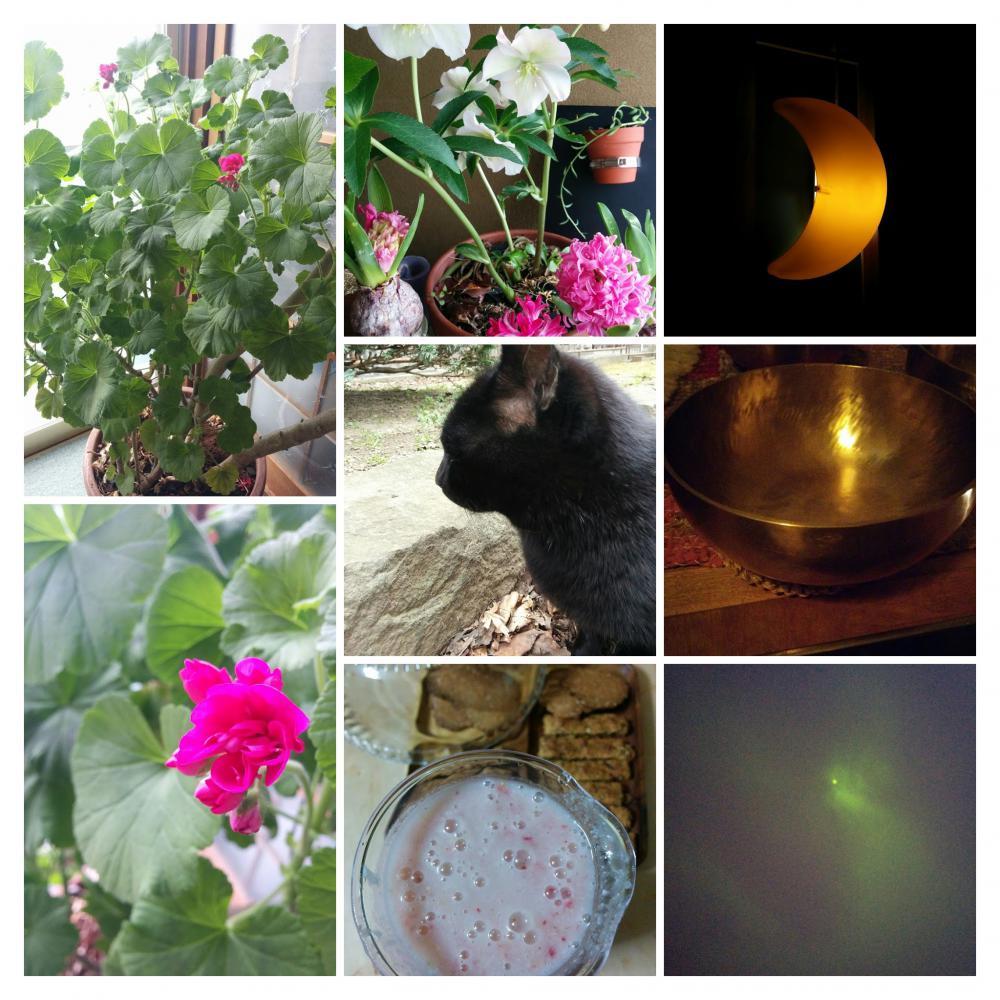 3月9日新月「お月さま瞑想ライブ」ありがとうございます