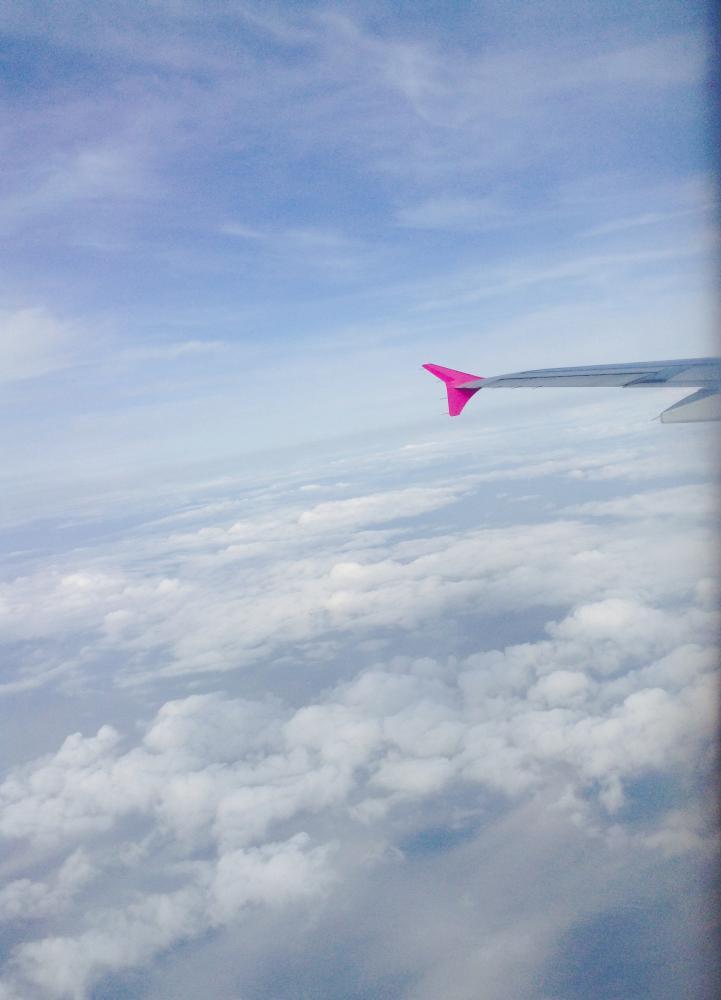 かわいいはーとの翼