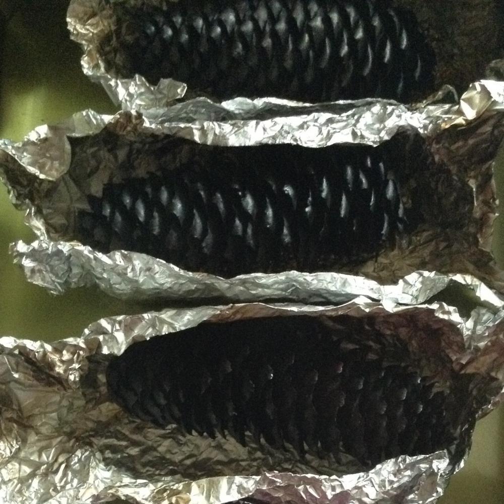炭の松ぼっくり