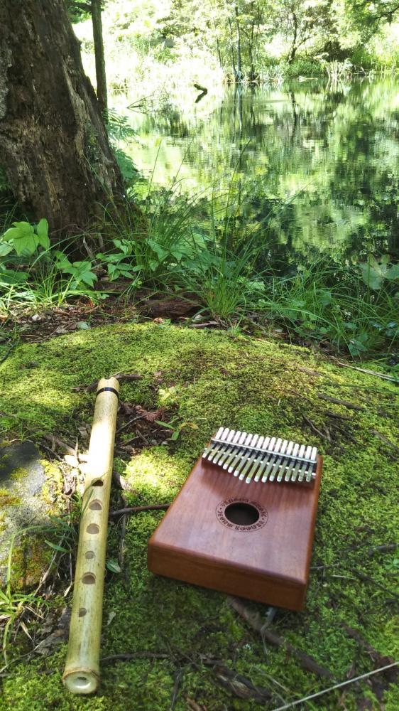 自然の中で音遊び~心も体も満足感で満たされました。ご馳走さまでした。