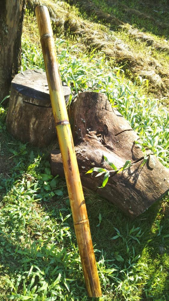 落ちている竹をみつけて
