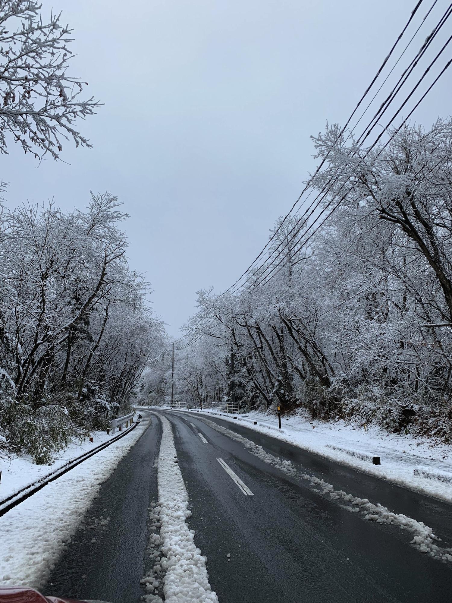 冬本番となりました!!