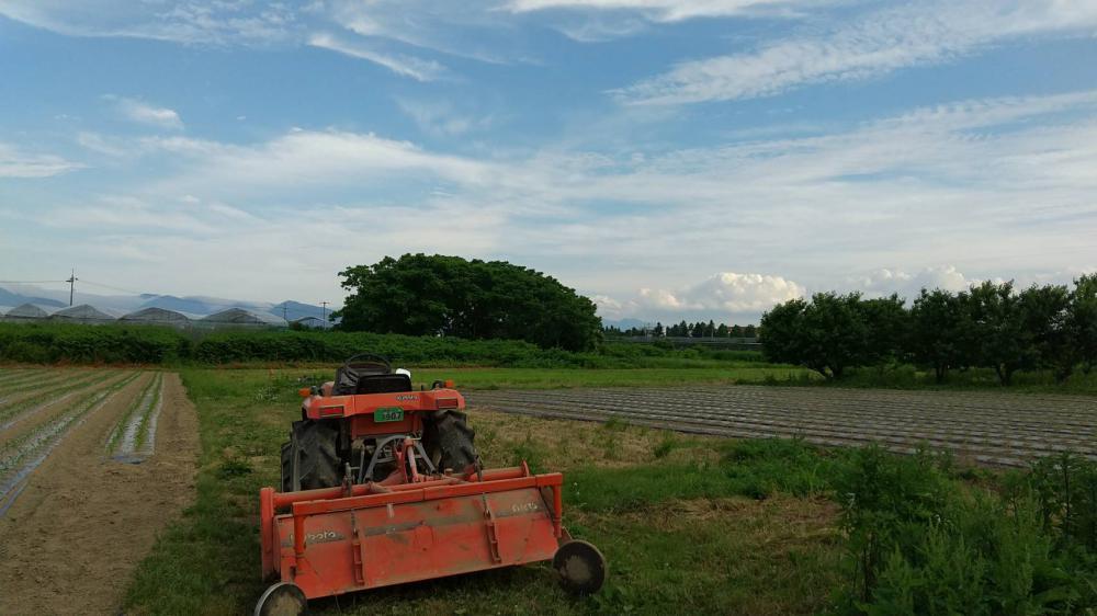 農機具チェック:画像