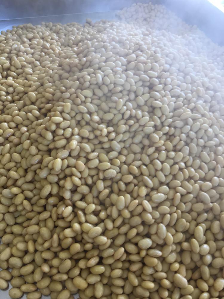 蒸し豆:画像