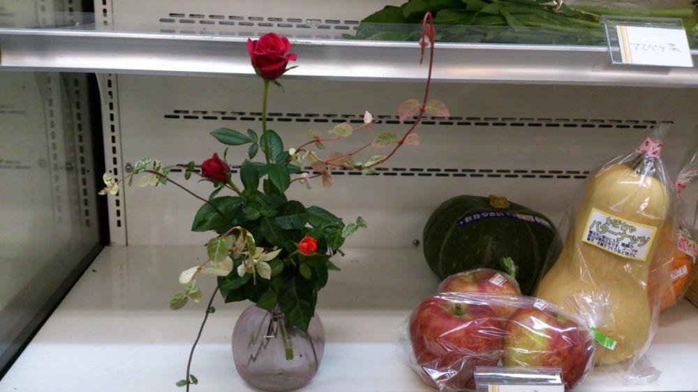 お花が届きました。:画像