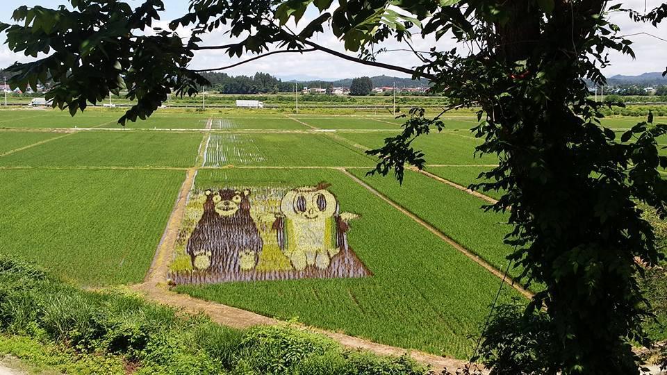 尾花沢市「田んぼアート」2か所くっきりと見えますよ