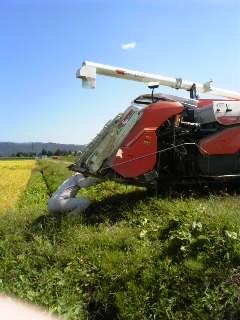 「セレブ米刈りますよ〜!」の画像