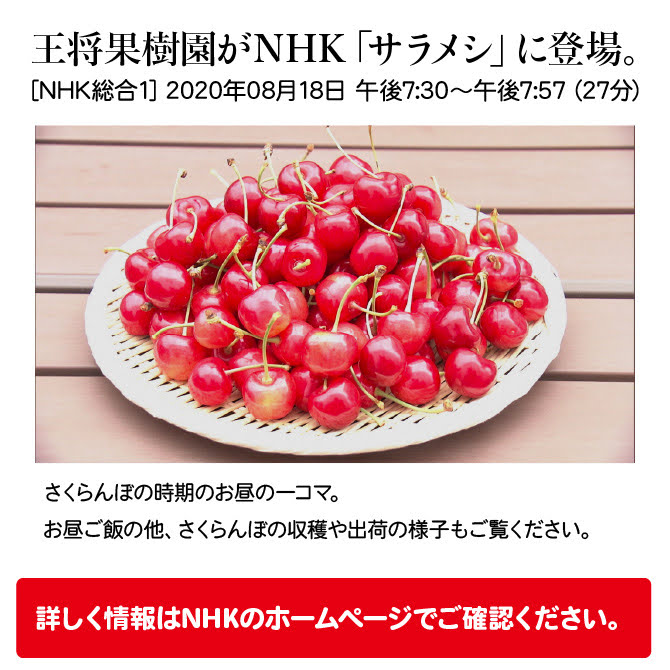 NHK「サラメシ」でご紹介いただきました!:画像