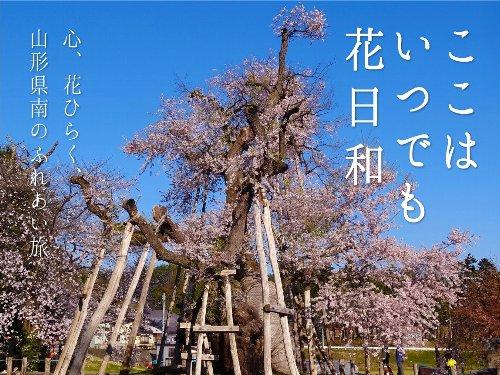 「やまがた花回廊2016キャンペーン」オープニングセレモニーが開催されました!:画像
