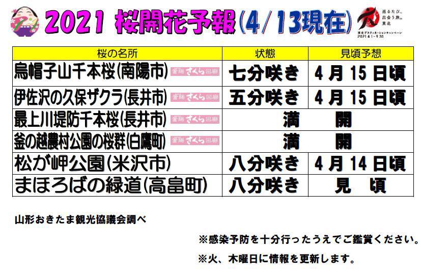 2021置賜地域の桜の名所の開花情報(4月13日現在):画像