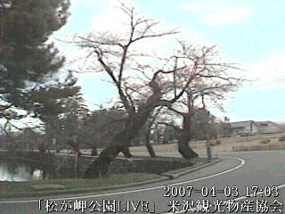 米沢ライブカメラ同盟:画像