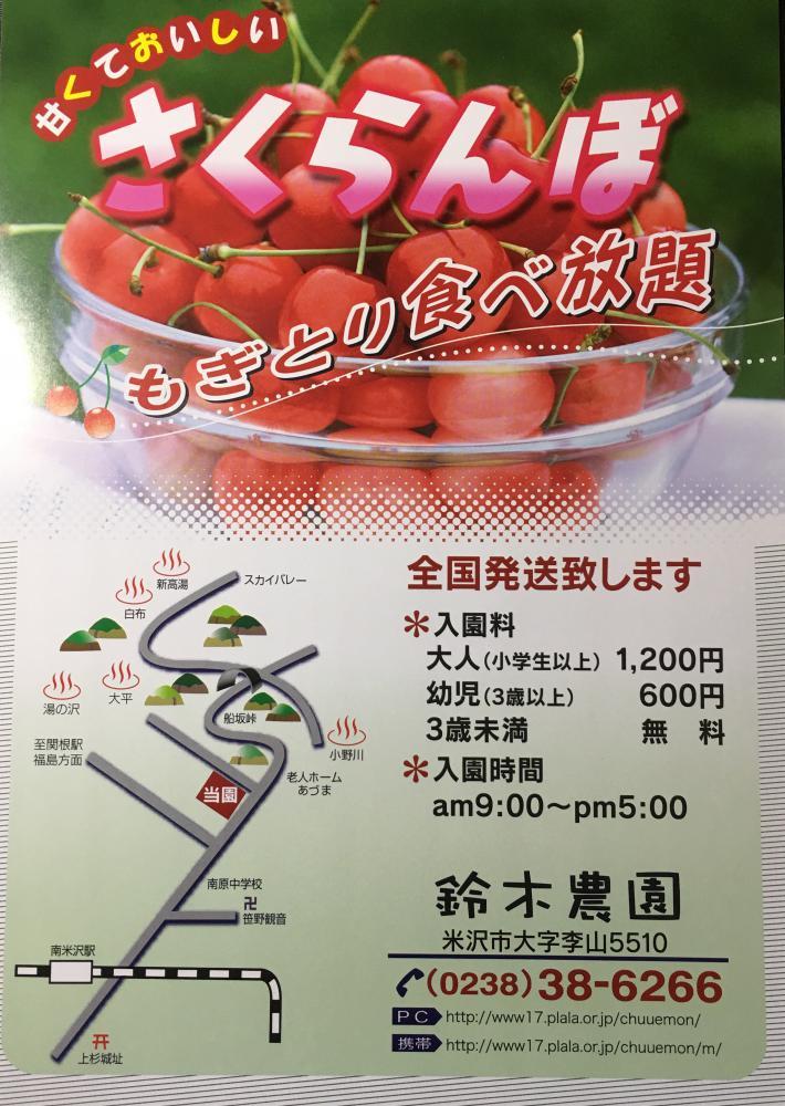 さくらんぼ鈴木農園 6/17〜7/2 もぎとり&出荷開始です。:画像